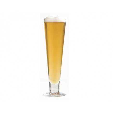 13. S&P Salut Glass Pilsner