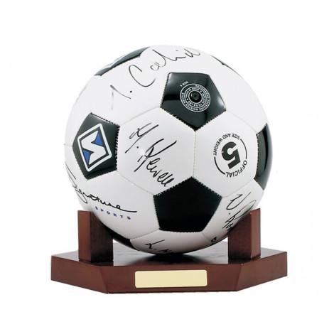 06. Soccer Ball Mount (Soccer Ball not included)
