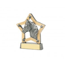 23. Horse Star Resin Trophy