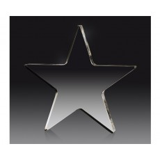 46. Clear Acrylic Star Award
