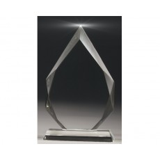 Crystal Arrowhead Award