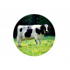 Cow Acrylic Button