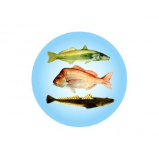 Fishing Acrylic Button