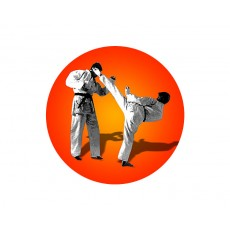 Karate Acrylic Button