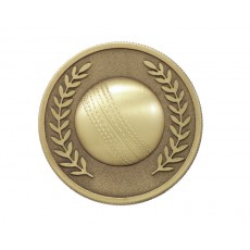 07. Cricket Gold Medal