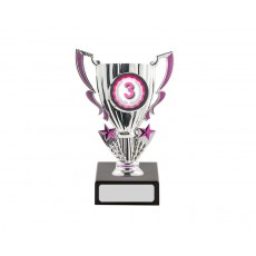 18. 3rd Place Silver/Pink Cup Trophy