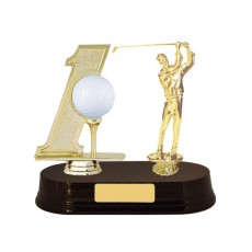 18. Golf Hole In One & Golfer Trophy