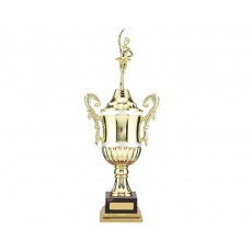 Gold/Silver Plastic Presentation Cup on Base