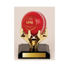 80. Cricket Ball Holder Trophy