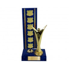 33. Achievement Perpetual Vista Blue Colour Trophy