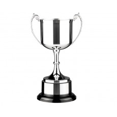 Silver Plated Presentation Trophy Cup