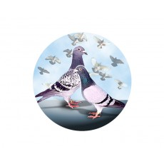 Pigeon Acrylic Button