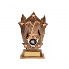 Karate Star Resin Trophy