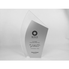 Acrylic custom award