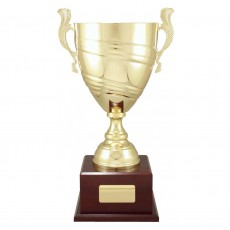 Gold Classic Metal Presentation Cup on Base