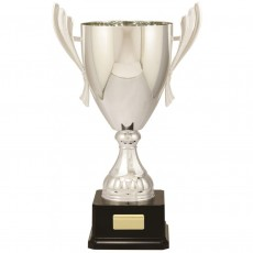 'Iron Man Series' Presentation Silver Cup