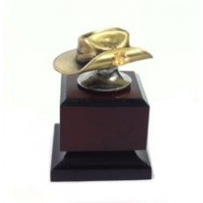Cast custom award