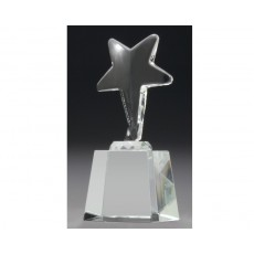 "Optical Crystal ""Star"" on Base Award"