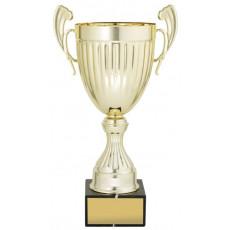 Gold Endeavour Presentation Cup