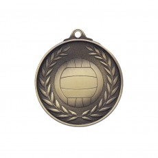 Antique Gold Netball Medal