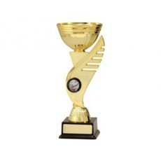 Netball 'Falcon Cup Series' Trophy