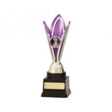 Netball 'Purple & Silver Sunray Series' Trophy