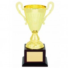Gold Metal 'Pacer' Presentation Cup on Base