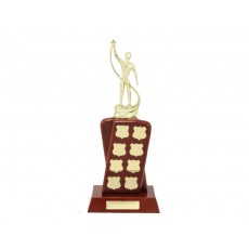 Perpetual Timber Trophy