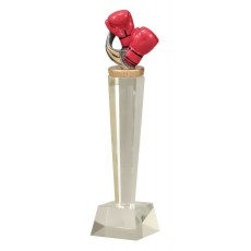 Boxing Trophy Glass Pedestal